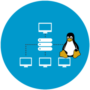 Linux Hosting Company in Delhi
